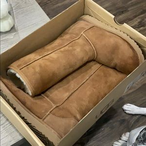 Chestnut Ugg Boot